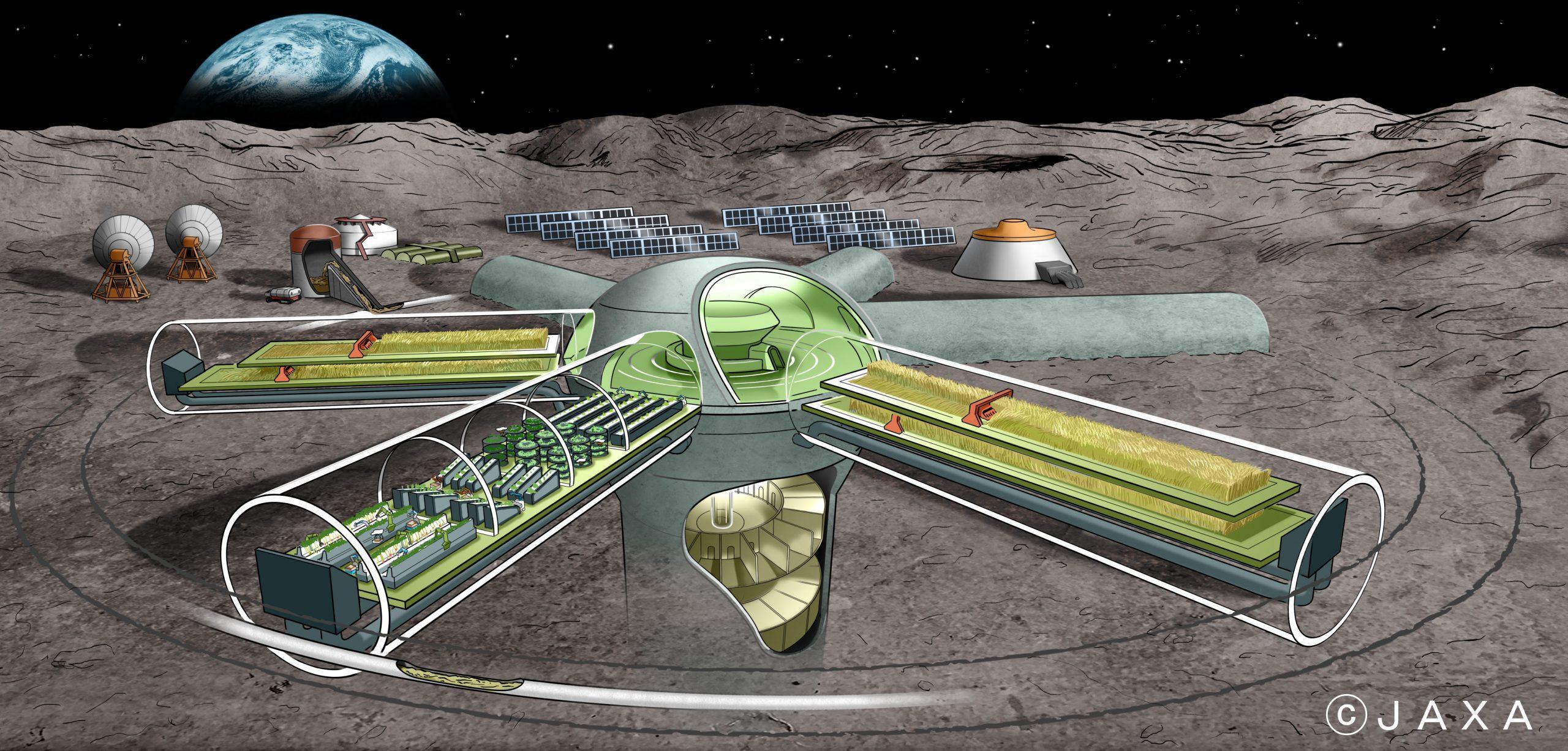 月面でのスピルリナ培養研究