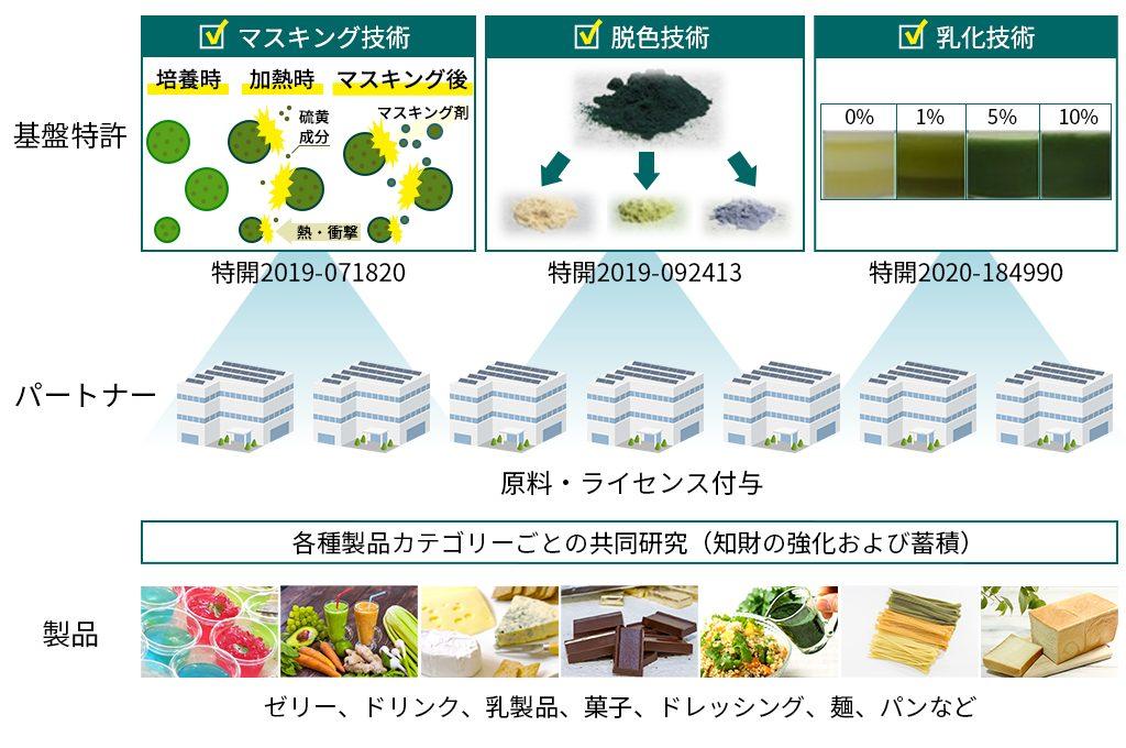 スピルリナの基盤特許、食品加工、製品化